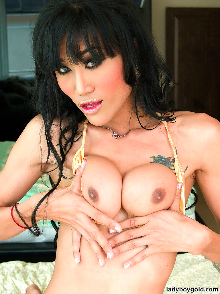All can busty japanese tranny pity