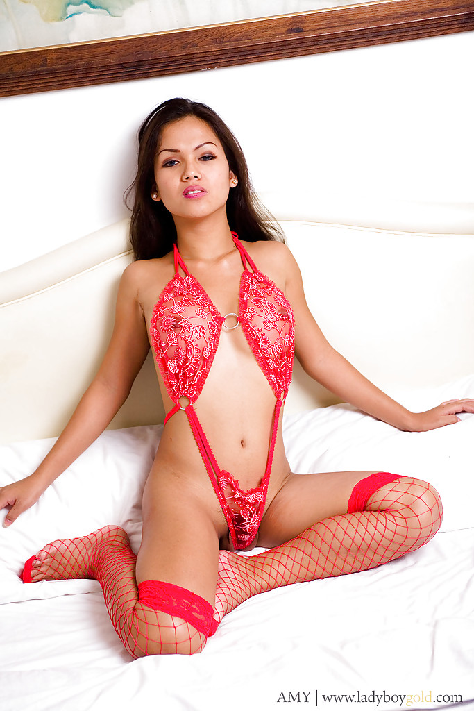 Sexy Thai shemale Amy showing us her red lingerie and masturbating