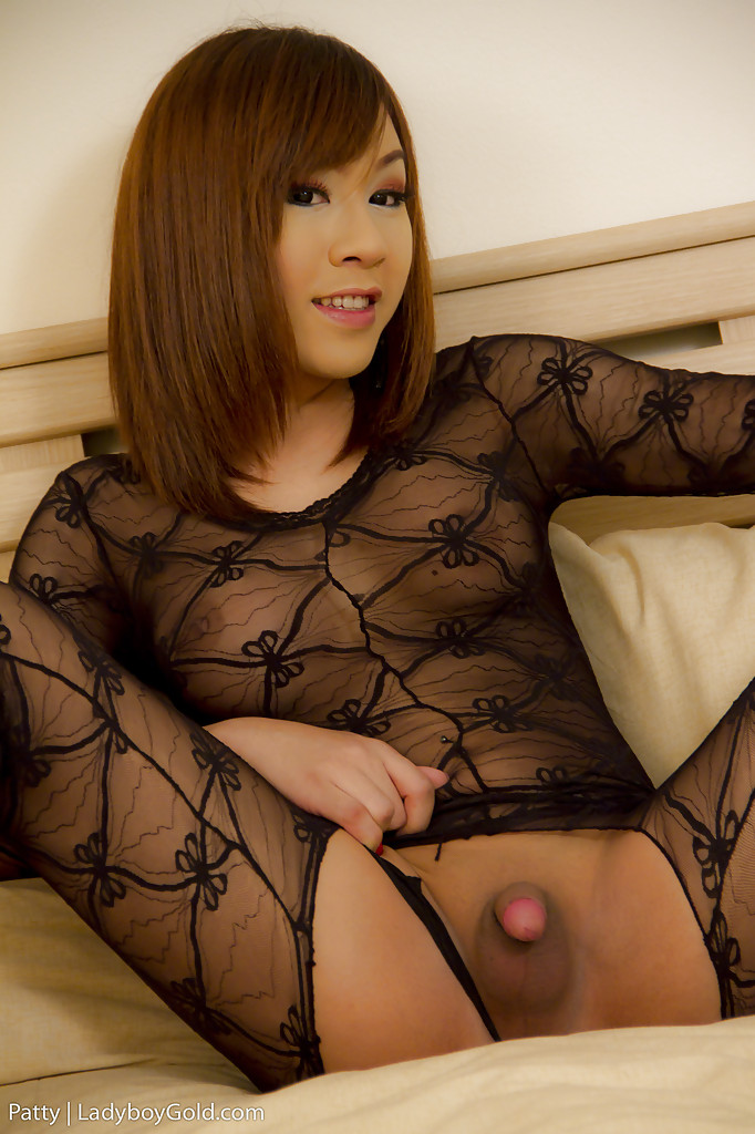 Tiny asian ladyboy