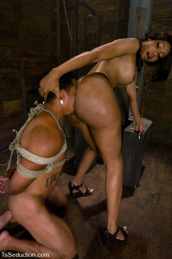 Male slave busted and fucked