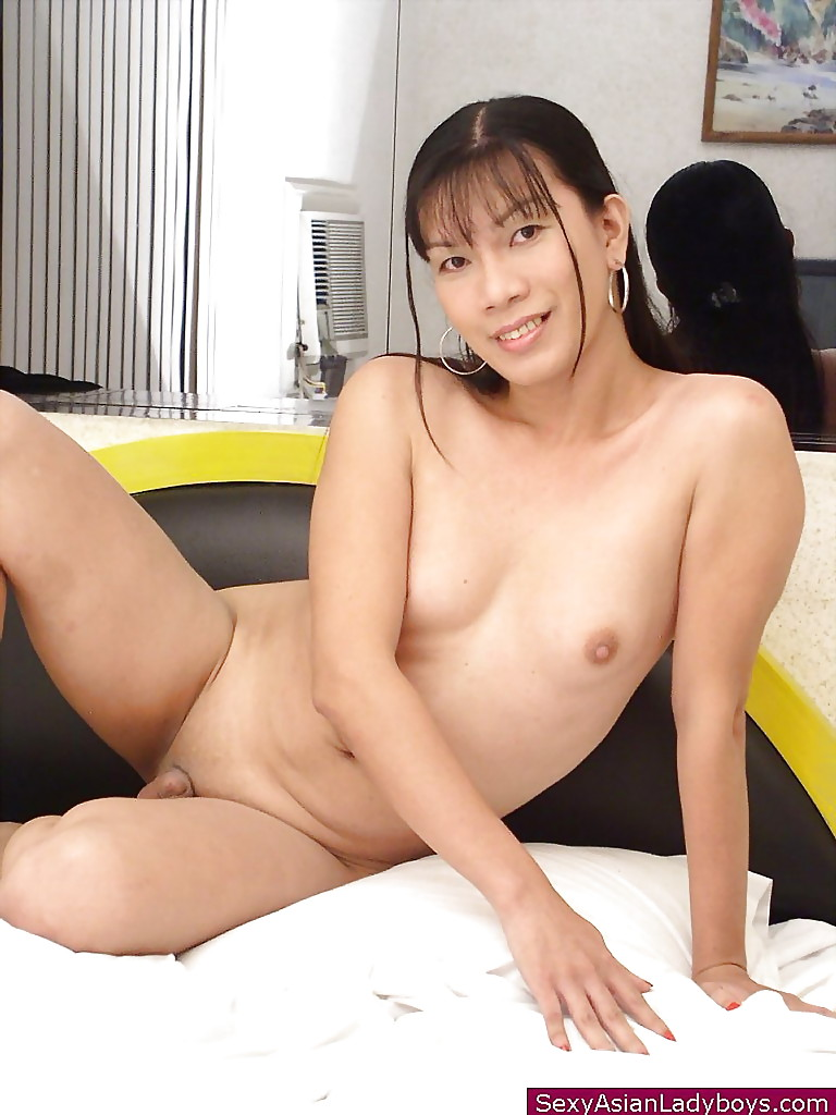 Shaven shemale model stripping thumbs