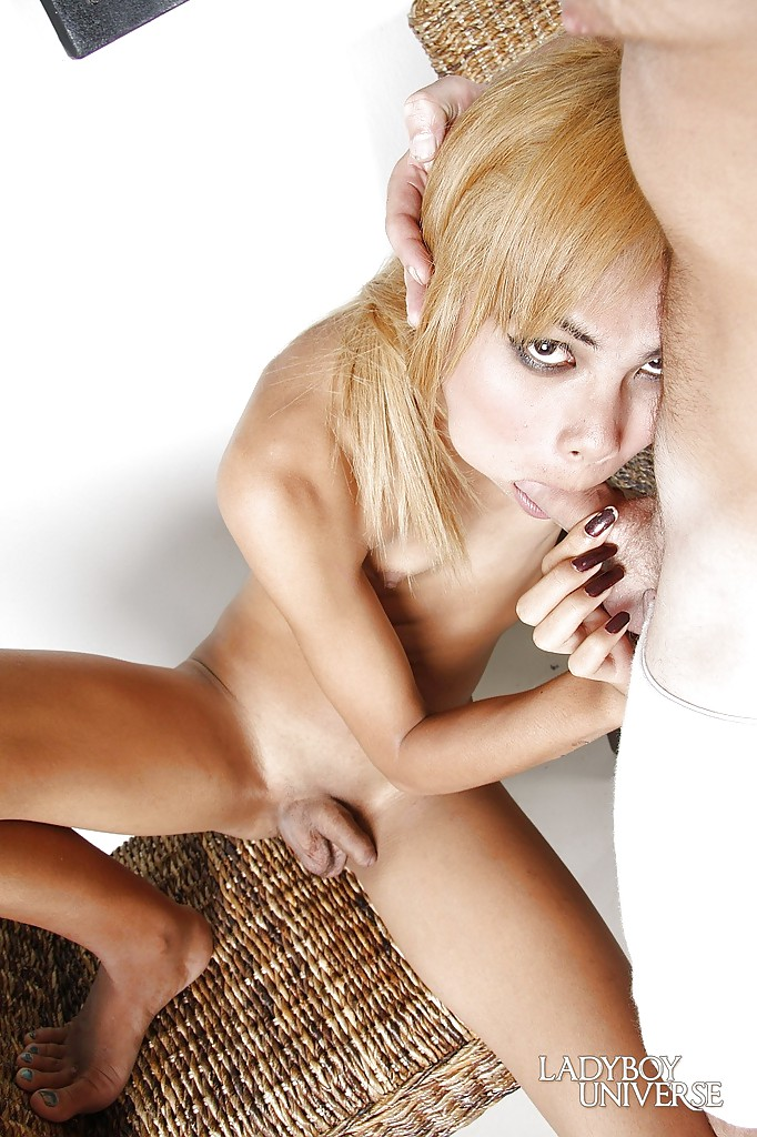 Cock hungry Thai shemale Nong giving a hard dick a sloppy sucking