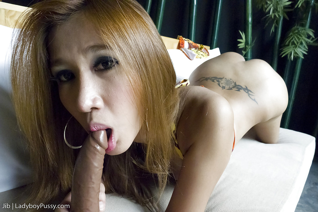 Busty Asian shemale Jib has post op ladyboy pussy stuffed with cock
