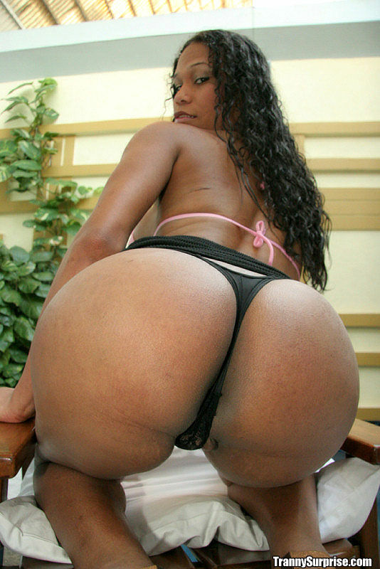 Latina Big Booty Riding
