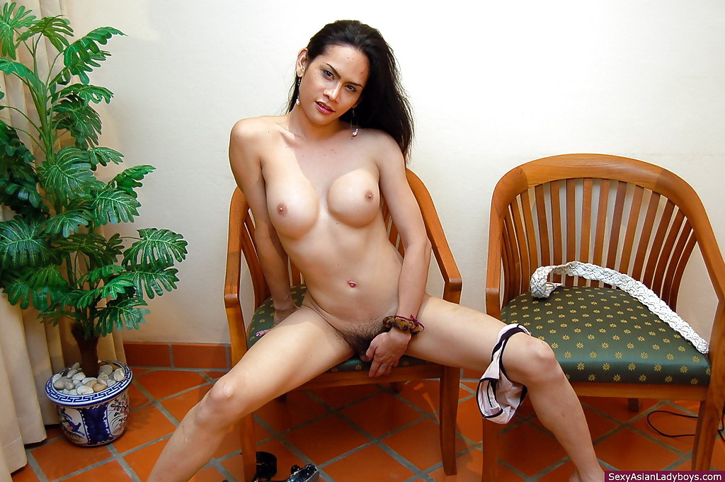 Hairy gorgeous shemale