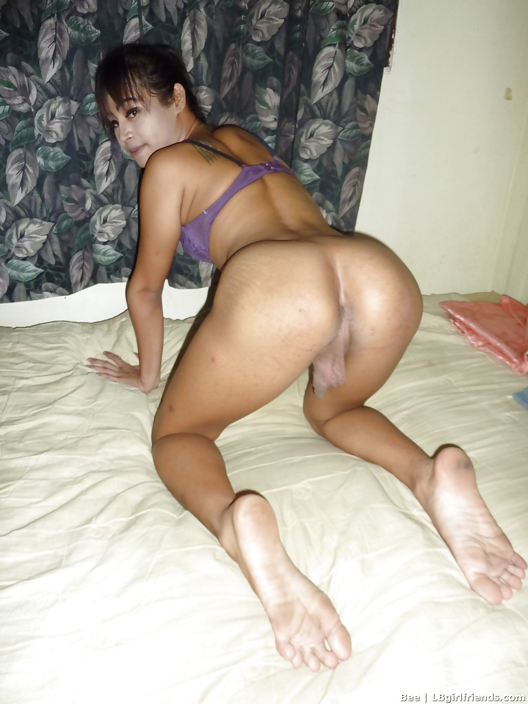 Asian young tranny