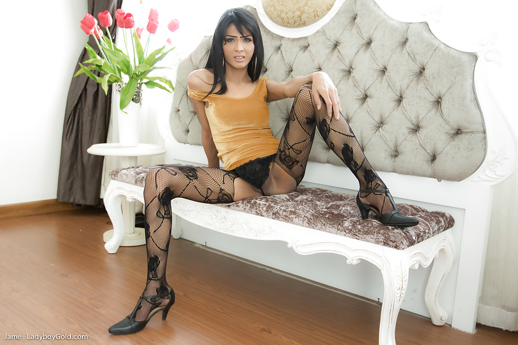 Free adult web site graphic