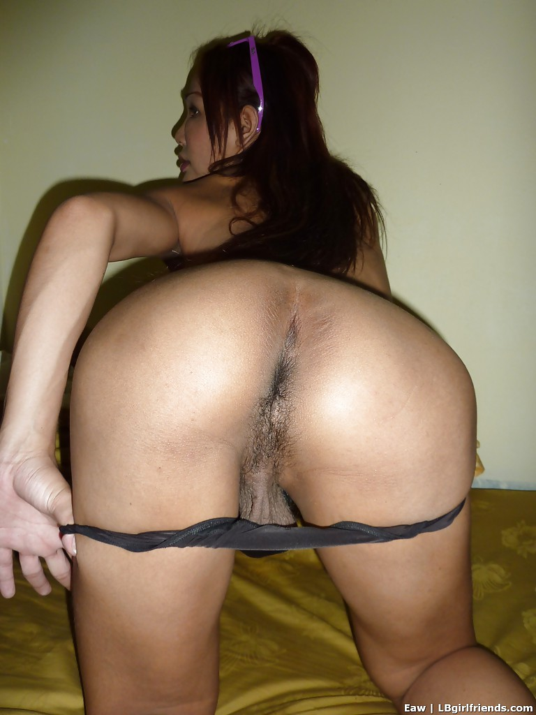 Busty Asian shemale showing her cock and spreading her hairy asshole