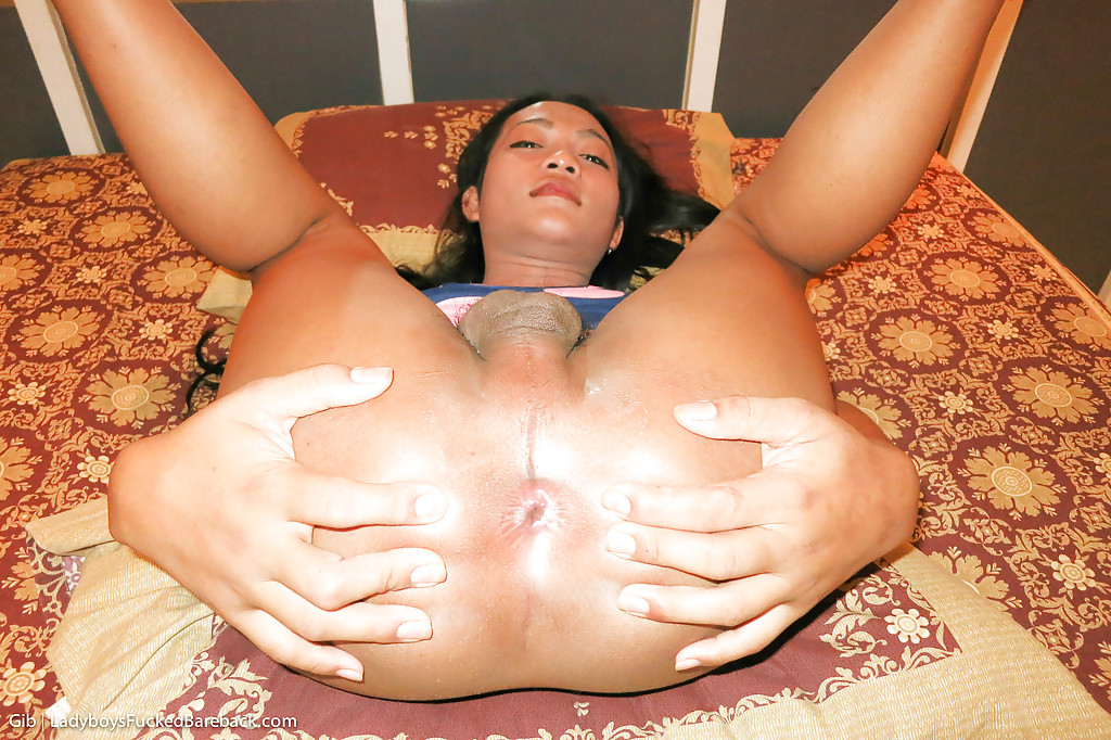 Horny Asian tranny Gib sucking a dick and getting fucked doggystyle