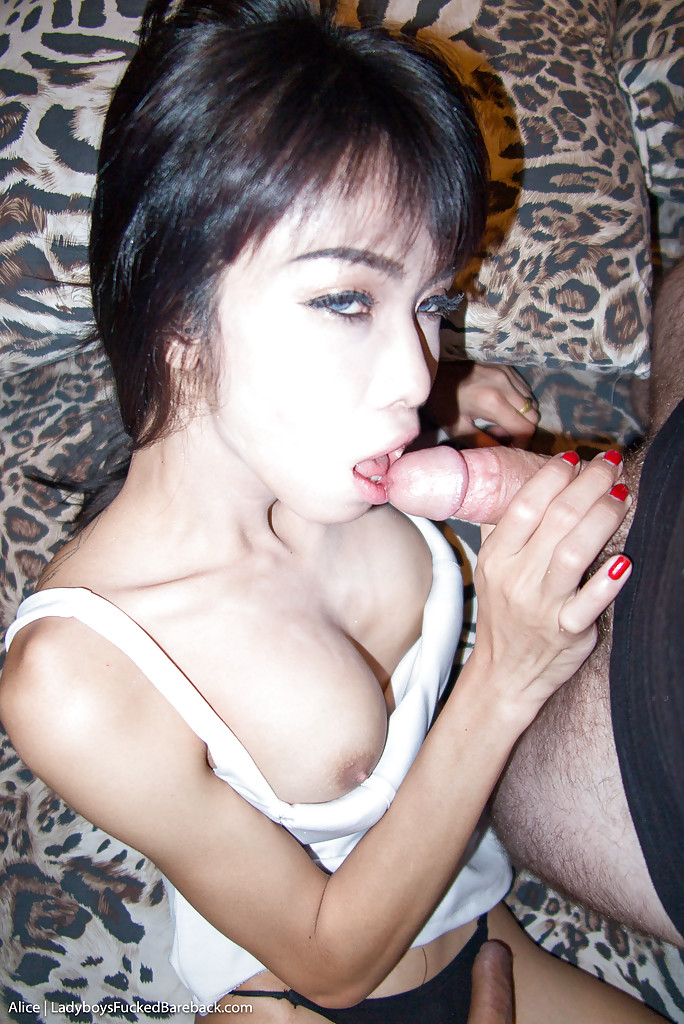 looking for thai wife anal fuck and creampie