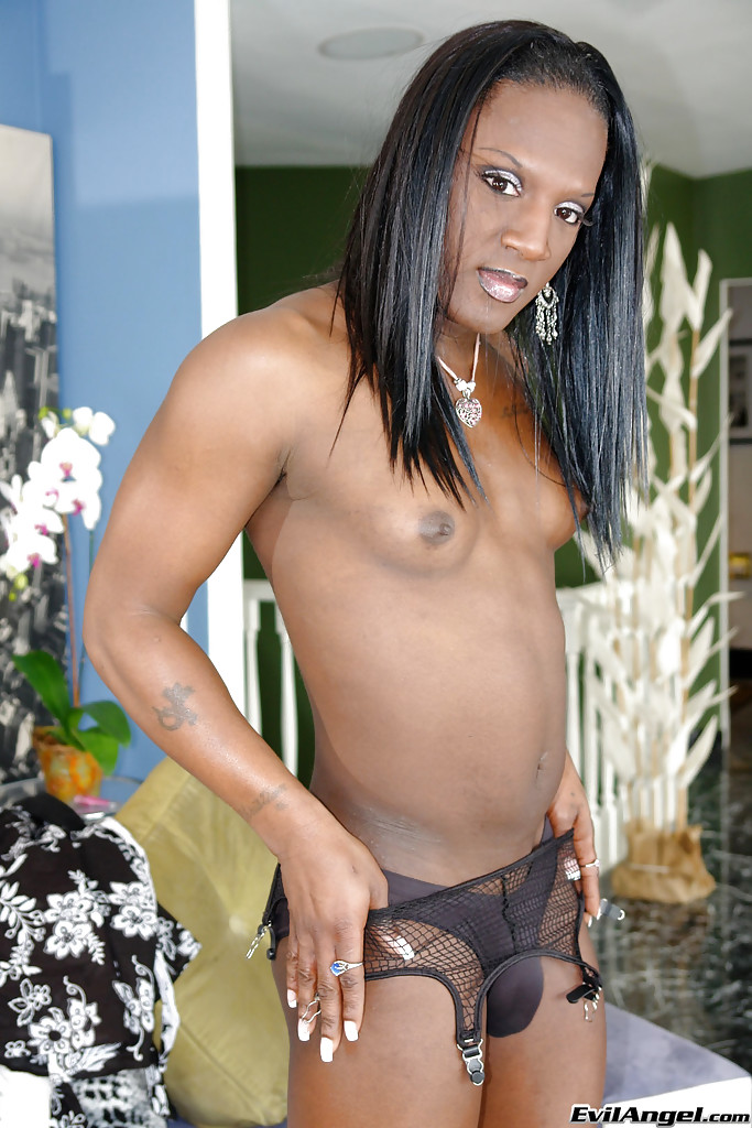 Big cock and black tranny