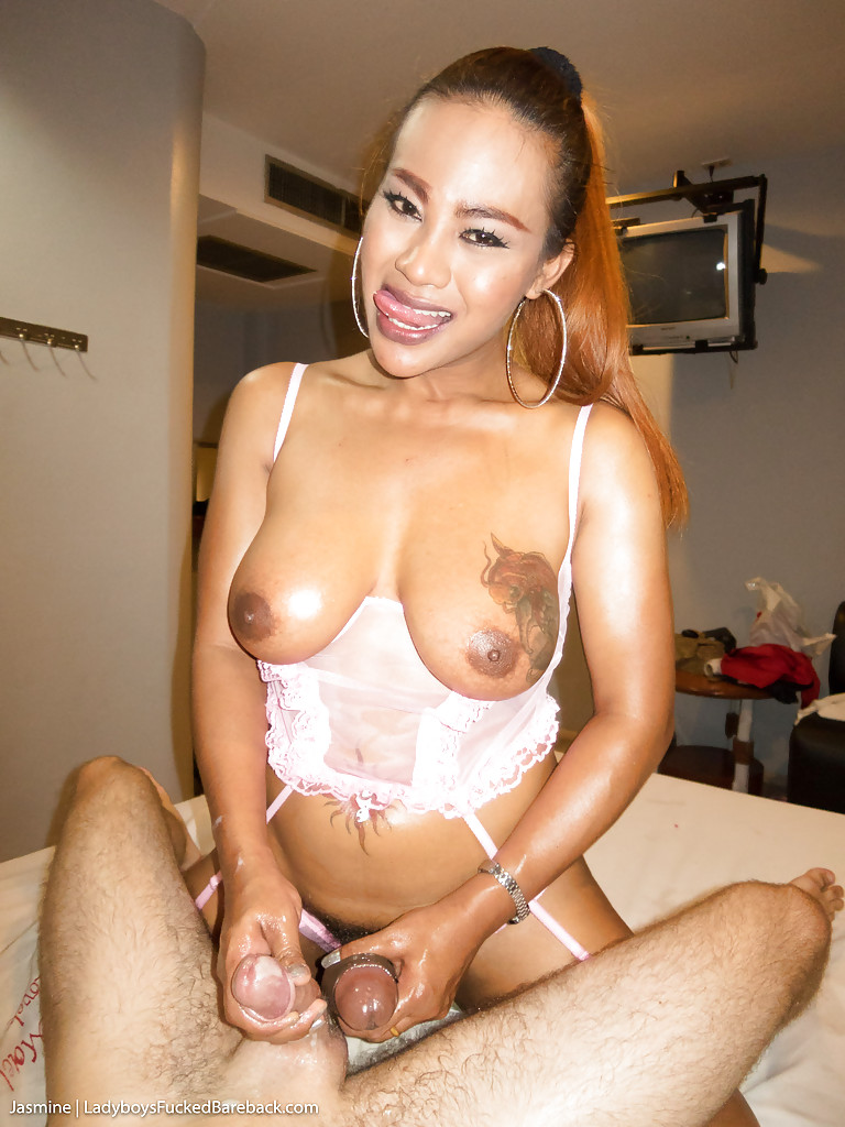 My asian ladyboy-1619
